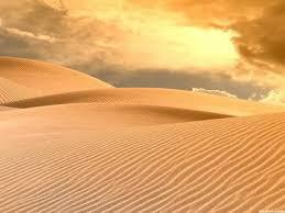 Пустыни Рефераты Пустыни
