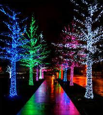 Christmas:Twinkle Light Christmas Tree Fresh Christmas Lights Luxury Twinkle  Light Christmas Tree Awesome