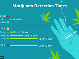 Saliva Drug Test Detection Times Chart How Long Does Marijuana Stay In Your System