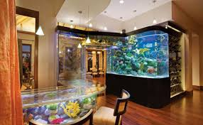 How to Decorate your House with Fish Tank
