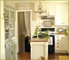 Should I Paint My Kitchen Cabinets White Simple Design