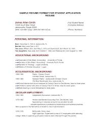 Resume For Job Application Template Standard Cv Format For Job