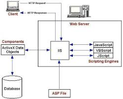 The Internet Information Server