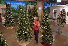 bethlehem lighting christmas trees. Captivating Qvc Bethlehem Lights Christmas Trees 6 5 Noble Spruce Tree W Instant Power Lighting