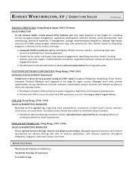 VP Sales Sample Resume Executive Resume Writer VP Director CTO