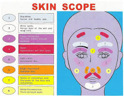 Skin Scanner Color Chart Skin Color Analyzer 1