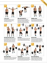 Bodybuilding Chart Free Download Free Downloadable Workout Poster The 30 Top Upper Body