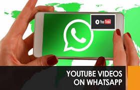 Image result for व्हाट्स एप में भी देख सकेंगे यूट्यूब वीडियो