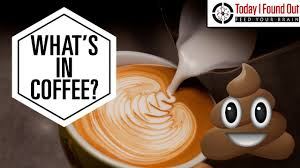 Why Does Coffee Make You Poop? - YouTube