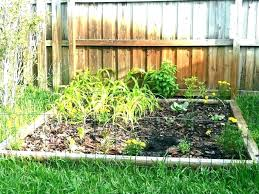 north florida vegetable gardening guide fall planting