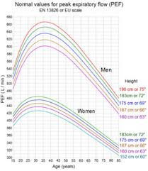 Peak Flow Measurements
