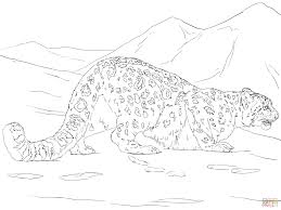Small Picture Snow Leopard Hunting coloring page Free Printable Coloring Pages