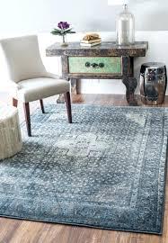 kitchen rugs wayfair round
