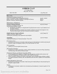 resume workforce analyst cipanewsletter vendor manager resume