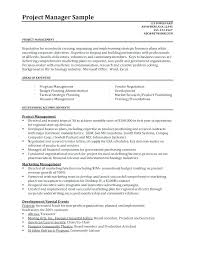 Assistant Project Manager Job Resume Sample It Spacesheep Co