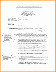 Resume Builder For Government Jobs Best Of 23 Sample Resume