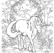 Unicorn Coloring Pages For Adults Unicorn Coloring Sheets Photo