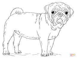 Small Picture Cute Pug Dog coloring page Free Printable Coloring Pages