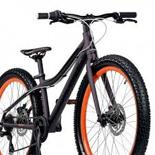 Is a bulgarian company established in 1995 specialized in the manufacuring of bikes, wheels and other components. Velosiped Cross Rebel 24 2019 Bikespirachka