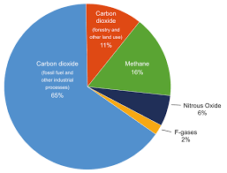 Pie Chart Showing Total Greenhouse Gas Emissions Due To