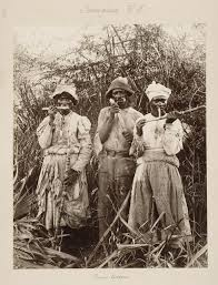 essay on slavery in the caribbean  essay on slavery in the caribbean