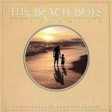 Beach Photo Albums Beach Photo Albums Under Fontanacountryinn Com