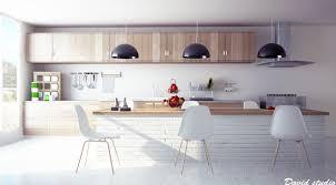 Wood Kitchen Modern White Wood Kitchen Cabinets