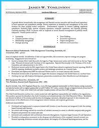 Senior Internal Auditor Resume Samples Velvet Jobs Sample Staff