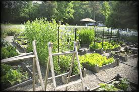 cute vegetable garden fence plans ideas