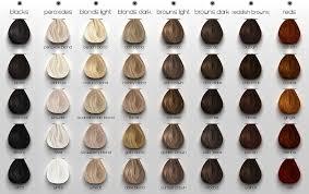 Ash Hair Color Chart Google Search Brown Hair Chart