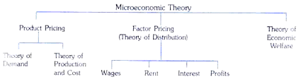 microeconomics essay on microeconomics microeconomics and the economy as a whole