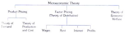 microeconomics essay on microeconomics microeconomics and the economy as a whole