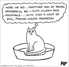 in his hilarious series on the prowl ilrator and book author rupert fawcett perfectly captures the true nature of cats