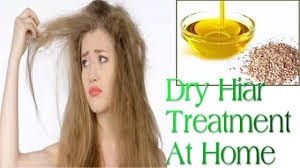Home Remedies For Dry Frizzy Rough Hair Dry Hair Treatment Youtube