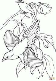 Small Picture Flying Magpie Pattern Coloring Page Animal Free Prints Of