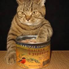 """""""Одне яблуко і бутерброд з лососем міг би з'їсти безкоштовно кожен південноуралець"""", - на челябінському ТВ розповіли про знищення санкціонки Роскомнаглядом - Цензор.НЕТ 7293"""