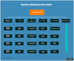 Typical Example Of A Matrix Structure Which Shows People