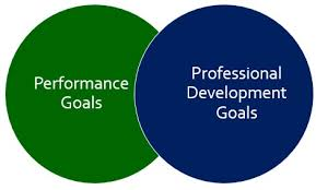 What Are Professional Goals Performance Goals And Professional Development Goals The Peak