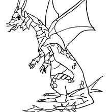 Small Picture DRAGON coloring pages 43 magical fantasy DRAGONS coloring sheets