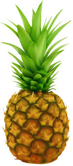 pineapple transparent background. view full size ? pineapple transparent background a