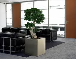 zen office furniture.  Office SmallZenofficewithgraycarpetblackleatherfurnitureandBonsaitree And Zen Office Furniture