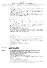 Community Services Resume Samples Velvet Jobs