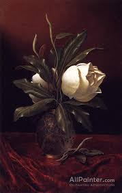 martin johnson heade paintings for two magnolia blossoms in a glass vase