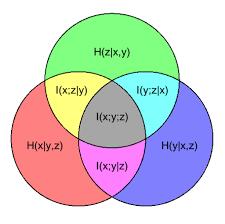 Venn Diagram Information Information Diagram Wikipedia