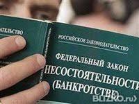 дипломные работы от компании АННА diplom  Дипломная работа Банкротство индивидуального предпринимателя