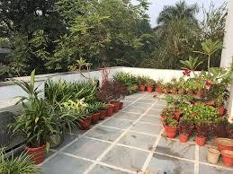 kitchen garden on terrace