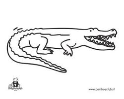 Kleurplaat Krokodil Projecten Om Te Proberen Kleurplaten