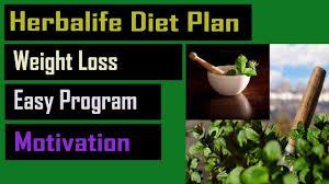 herbalife t plan for weight loss herbalife t program in summer 2019 herbalife reviews