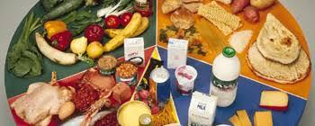 Balanced Diet Chart In Bangladesh