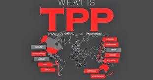 Image result for TPP mỹ